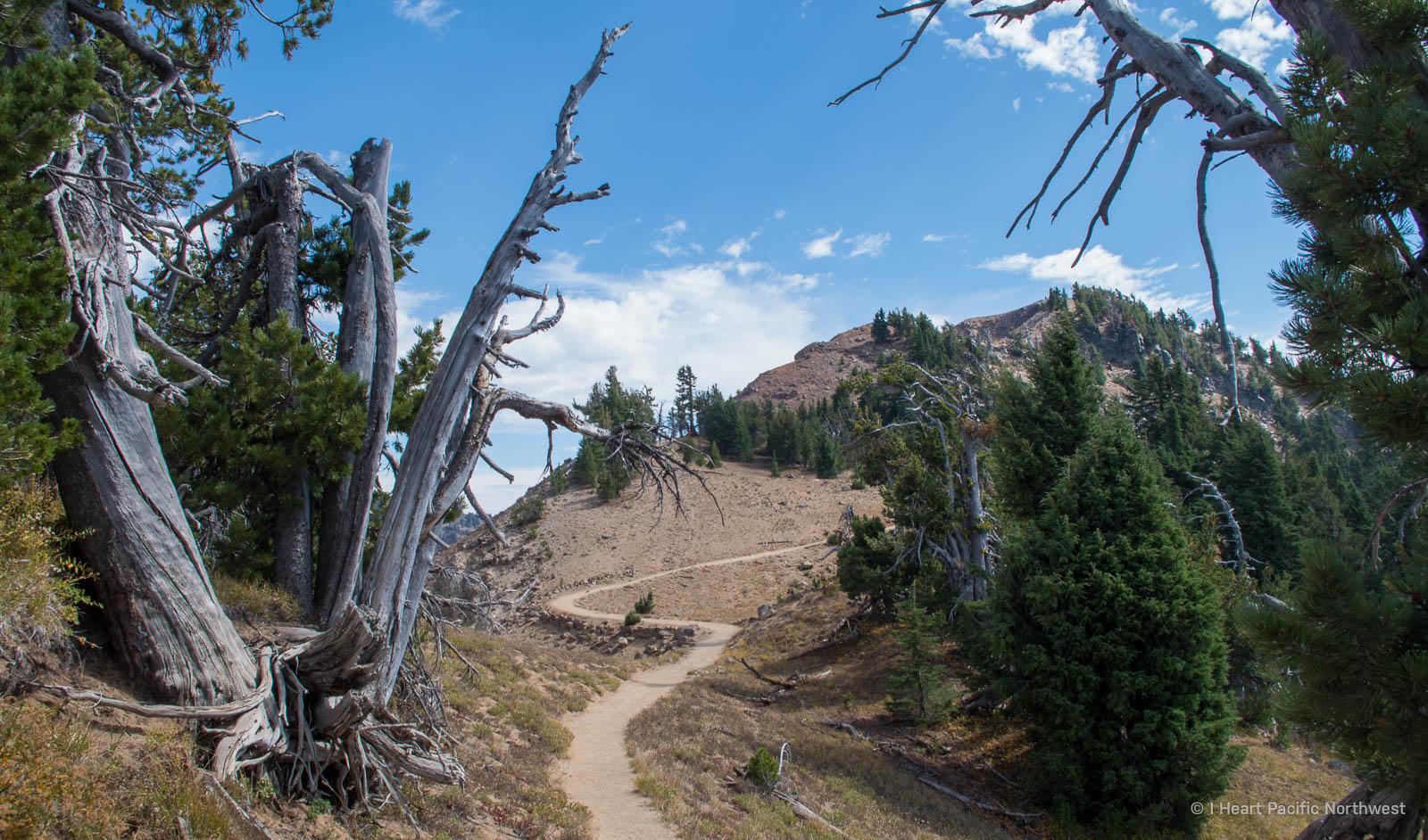 Crater Lake National Park - Garfield Peak hike