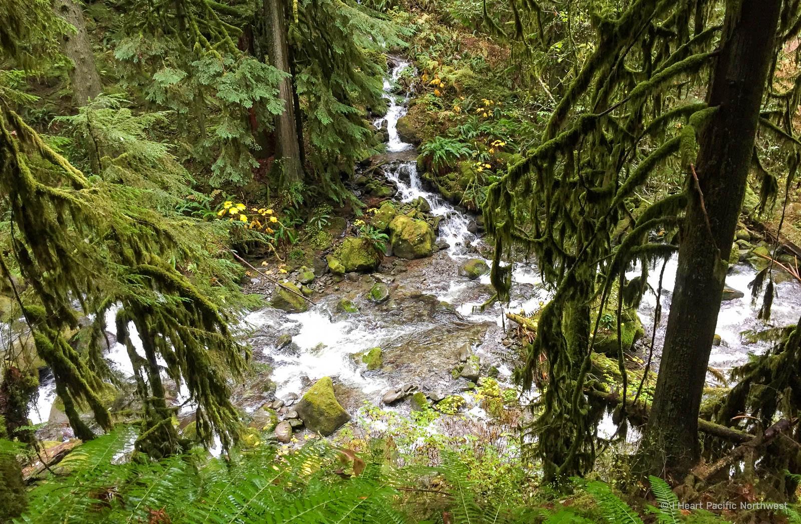 Multnomah Creek - Nesika Lodge hike