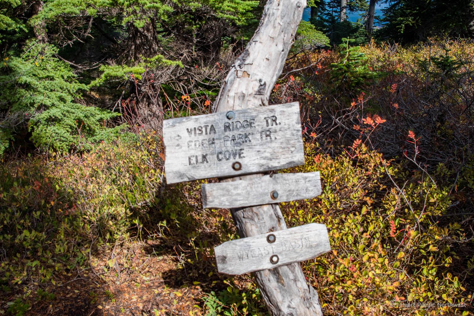 Mount Hood - Dollar Lake backpacking trip