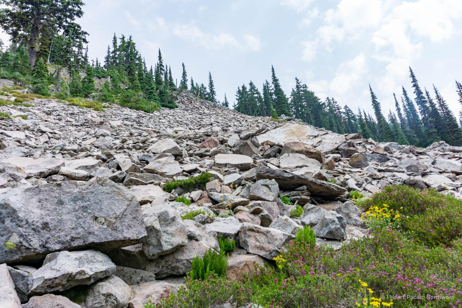 Goat Rocks backpacking trip