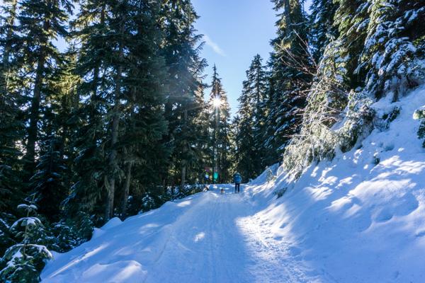 Bennett Pass snowshoe