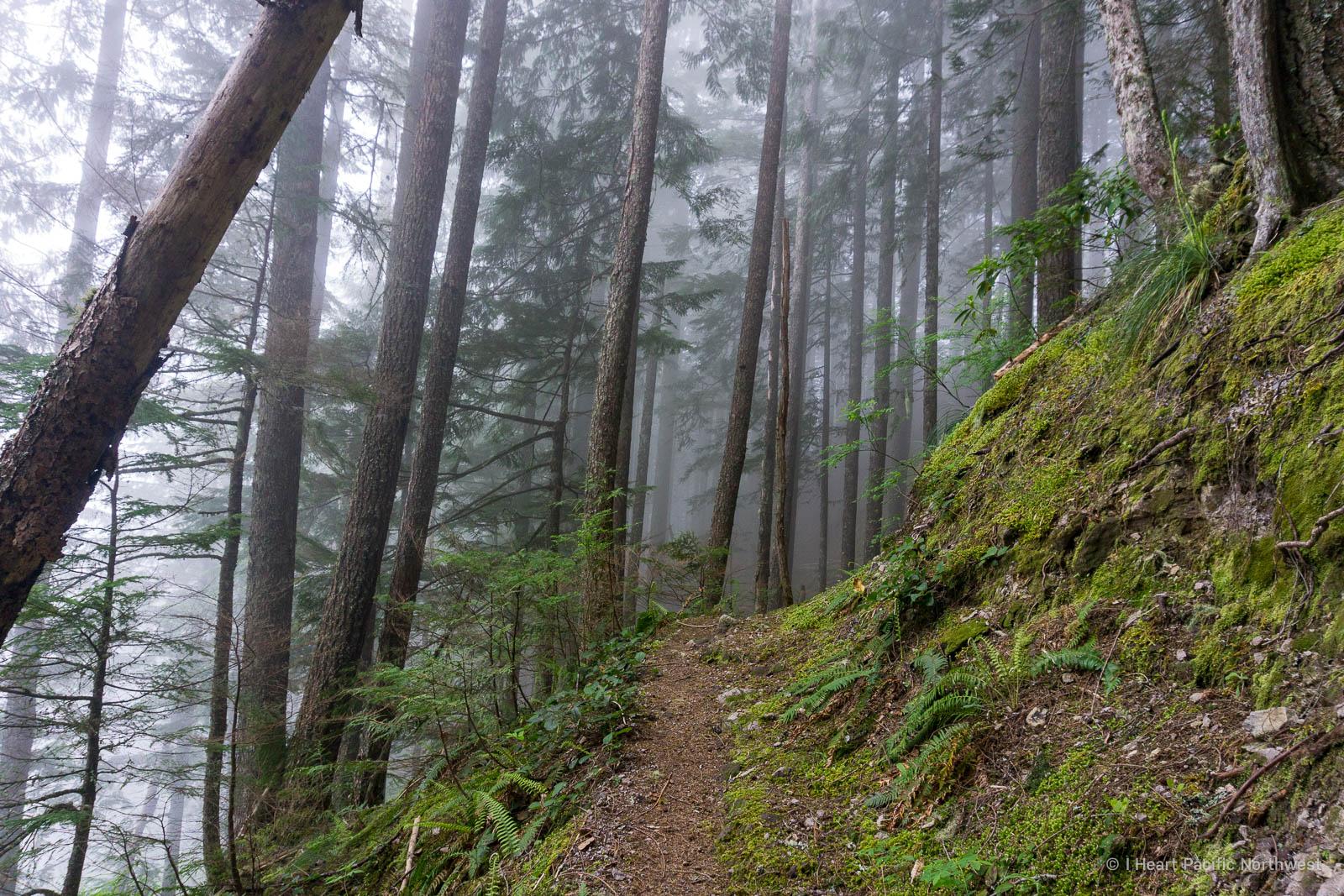 Boulder Ridge hike