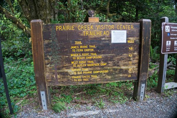 Redwoods National Park Prairie Creek Trail