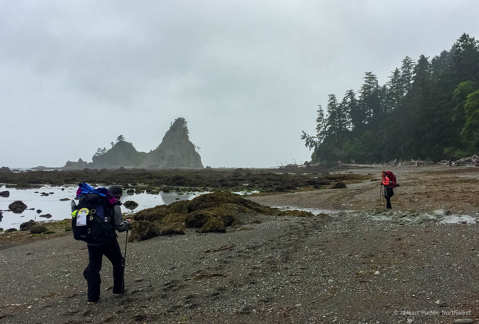 Olympic Coast - Rialto Beach to Chilean Memorial backpacking trip