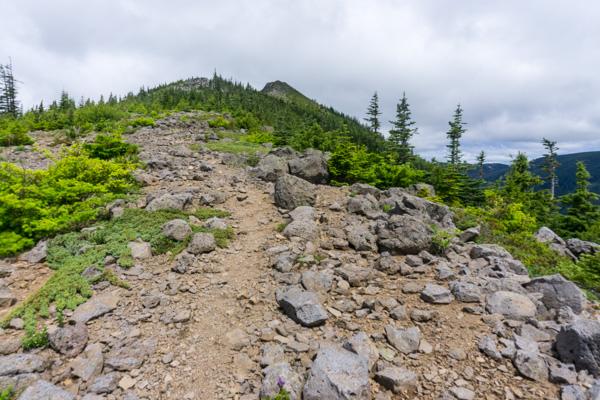 Tomlike Mountain hike