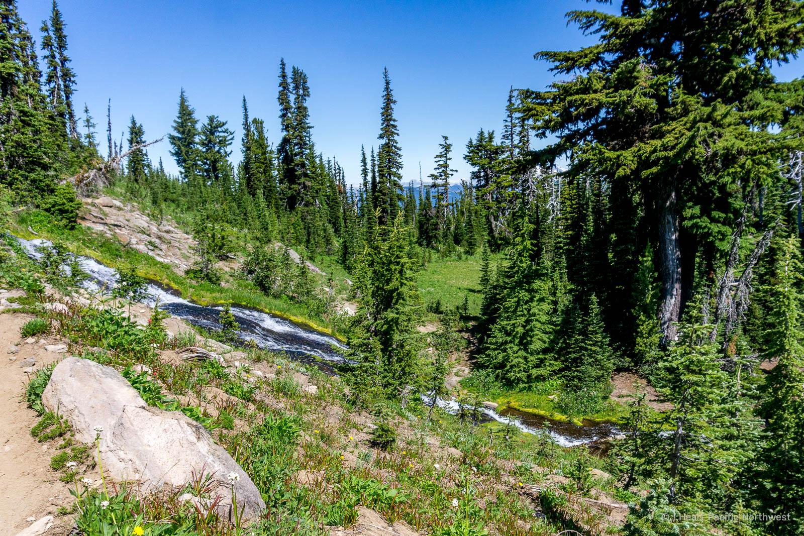Mount Adams - Killen Creek backpacking trip