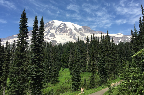 Mount Rainier camping and hiking trip