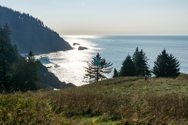 Harts Cove hike on the Oregon Coast