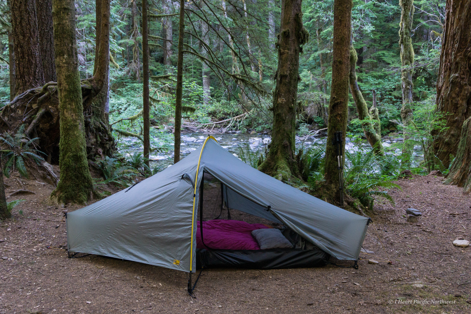 Tarptent Moment DW tent