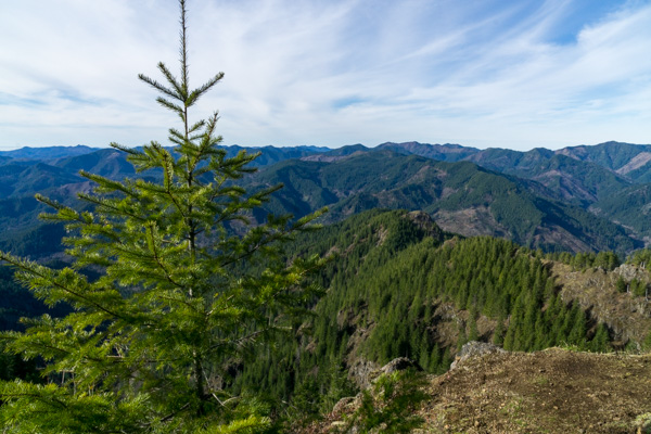 Kings Mountain Oregon Coast Range hike