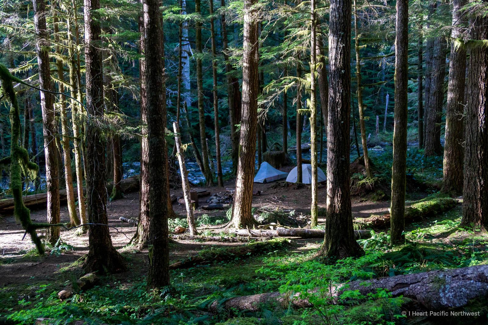 Siouxon Creek backpacking trip
