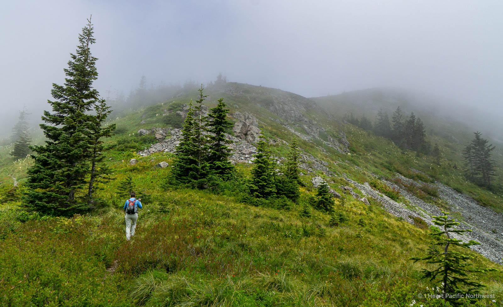 Silver Star Mountain hike via Grouse Vista trailhead