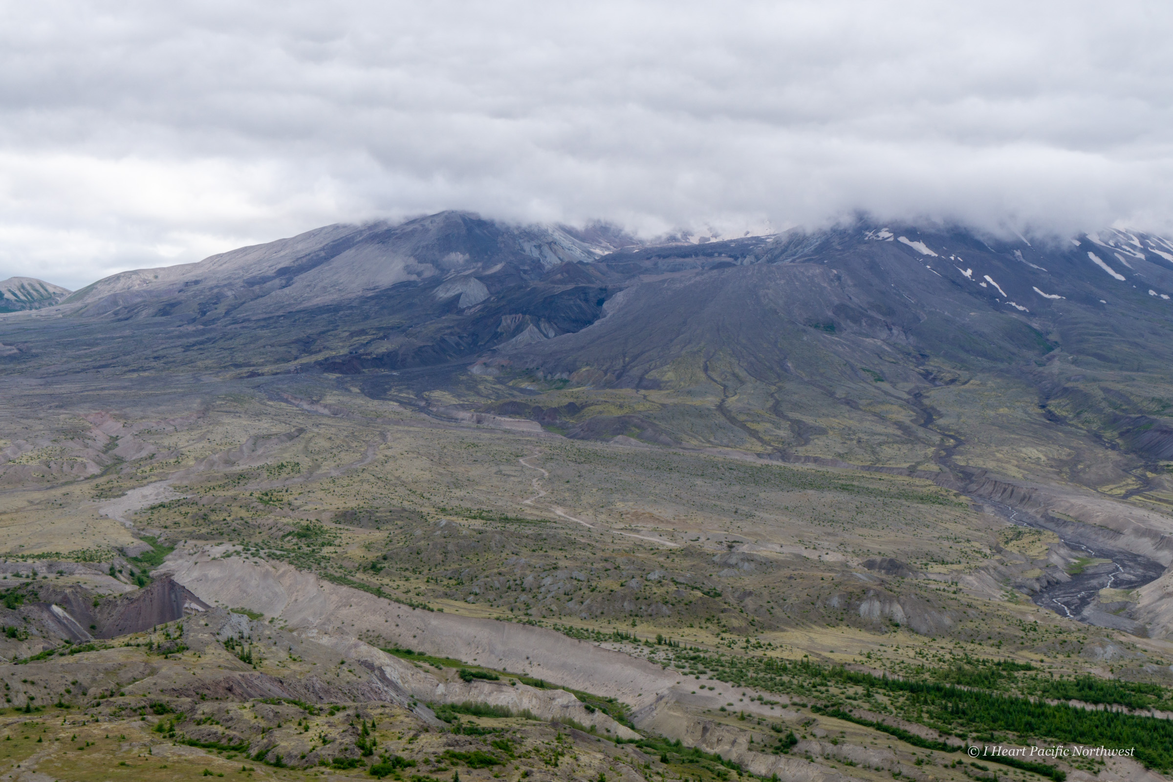 Mount St. Helens: Harry's Ridge hike