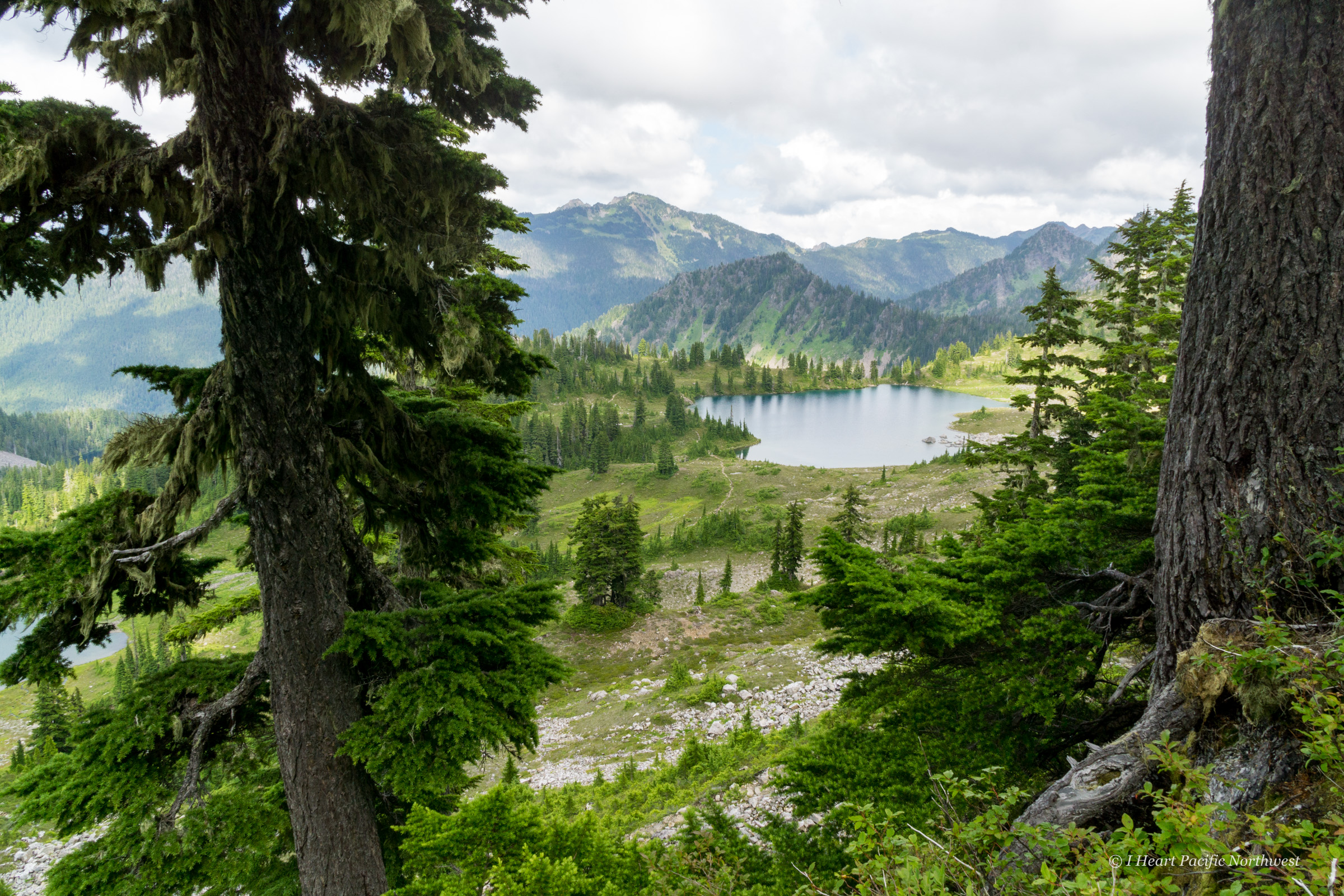 Olympic Mountains High Divide backpacking trip