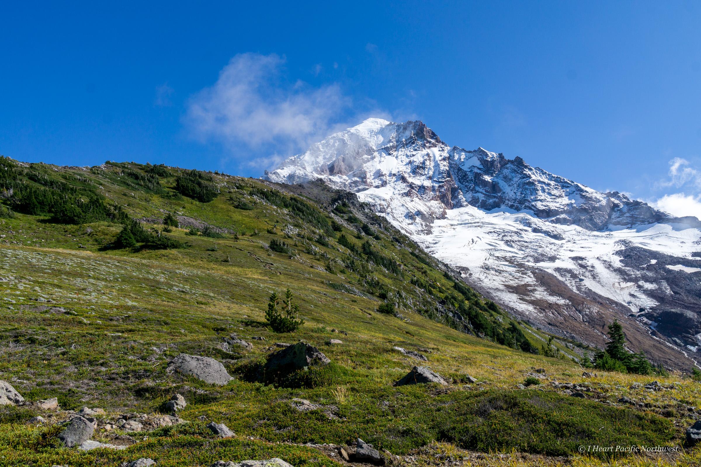 Mount Hood - McNeil Point hike