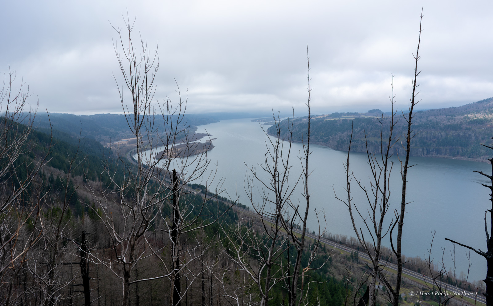 Angels Rest - Devils Rest - Wahkeena Spring loop hike