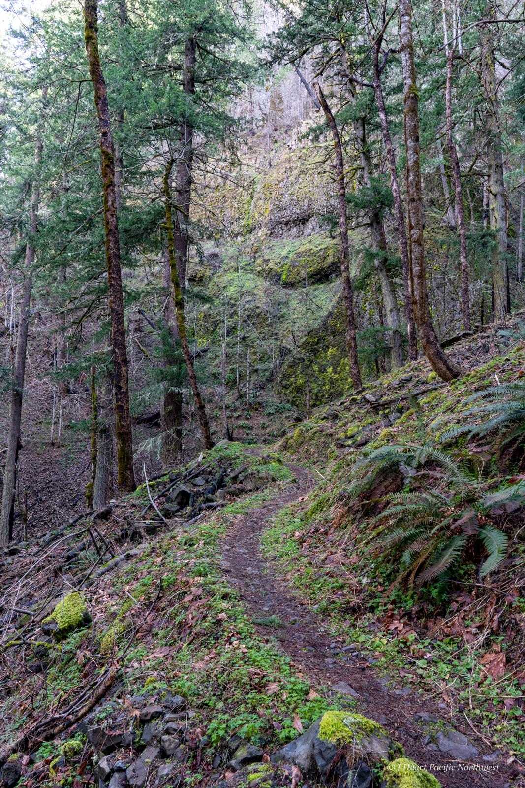 Herman Creek Pinnacles hike