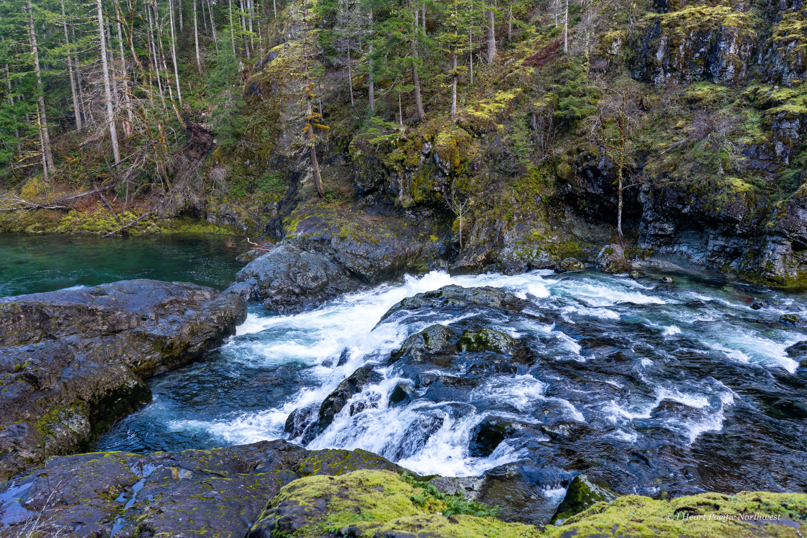 Little North Santiam River Trail