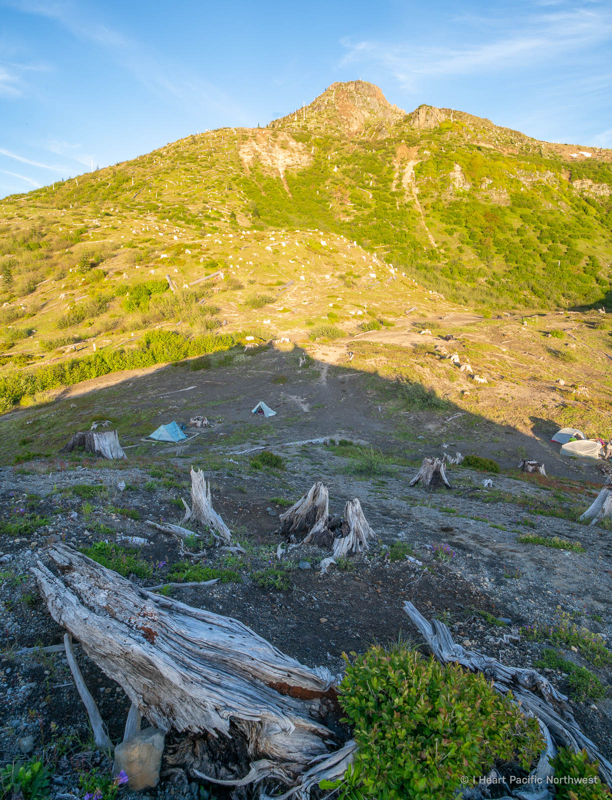 Mount St. Helens Ridge Camp backpacking trip