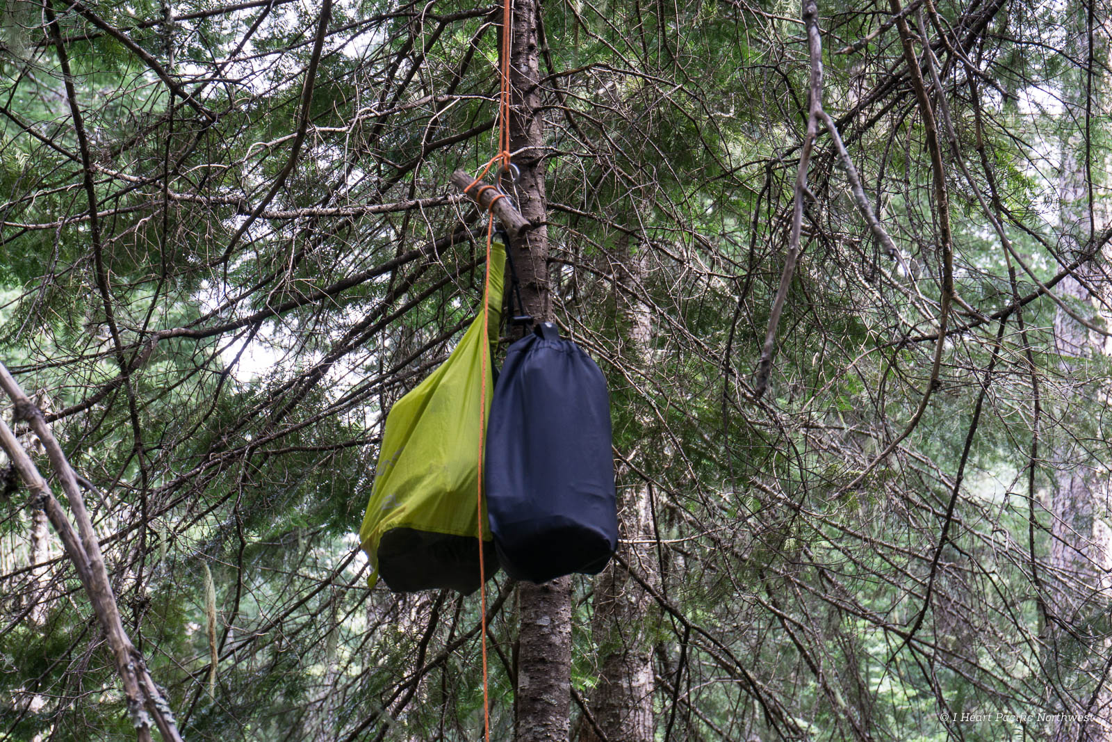 Backpacking Meal Prep and Food Storage Tips