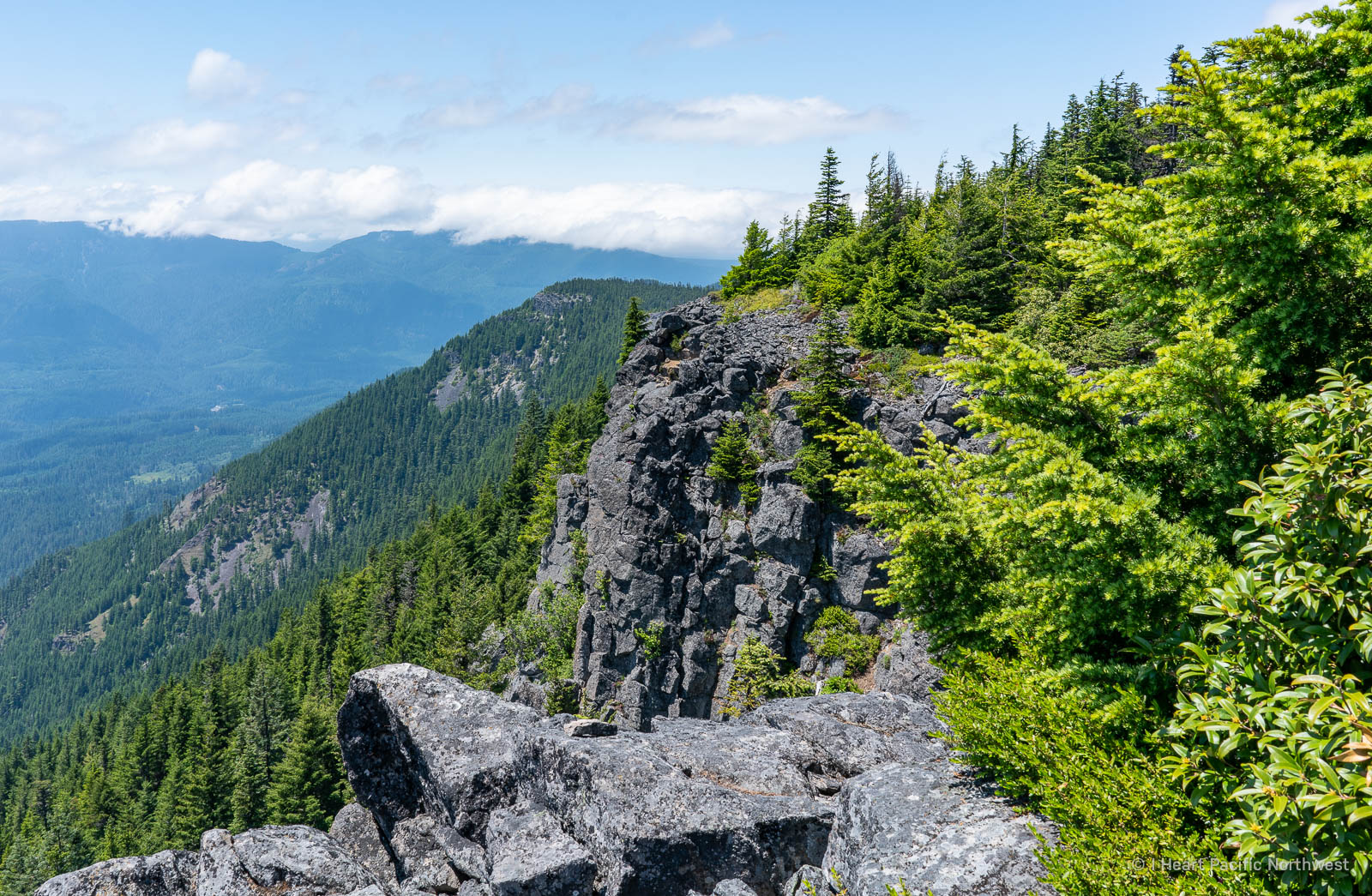 Mount Mitchell hike - Roaring River Wilderness