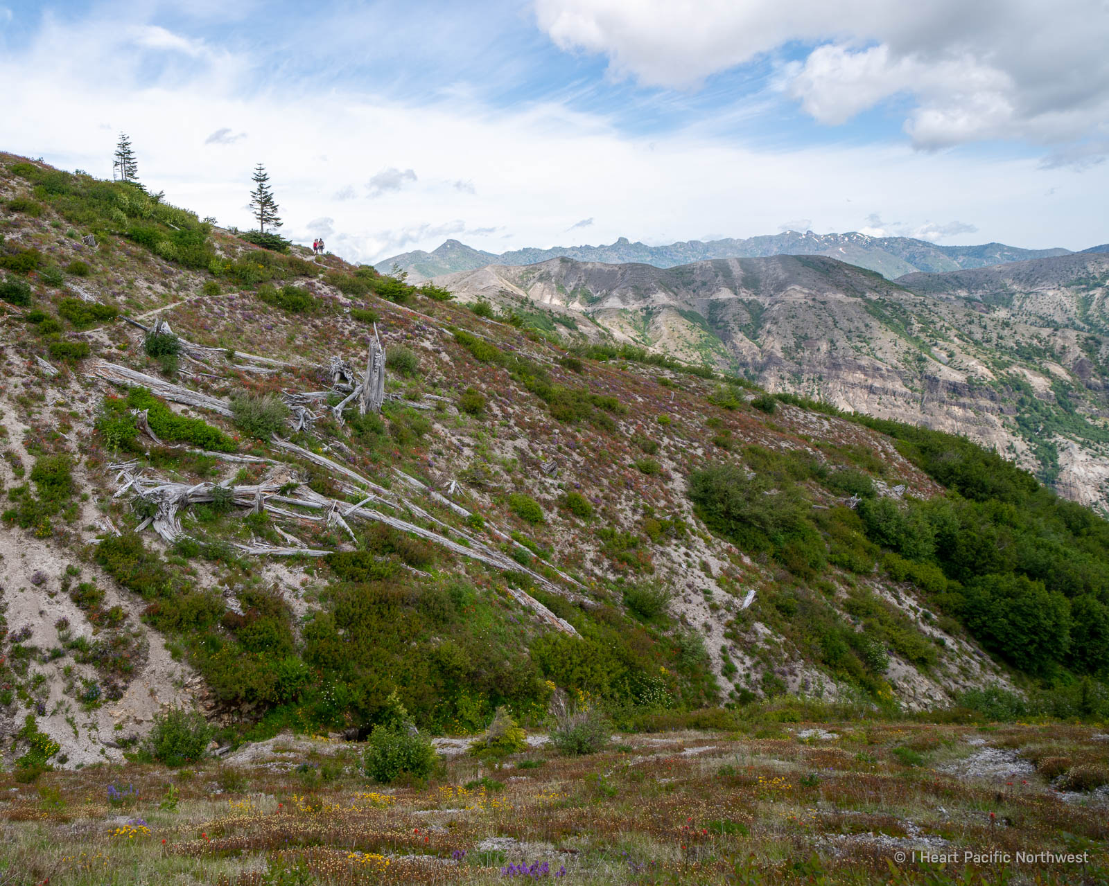 Mount St. Helens - Ape Canyon backpacking trip