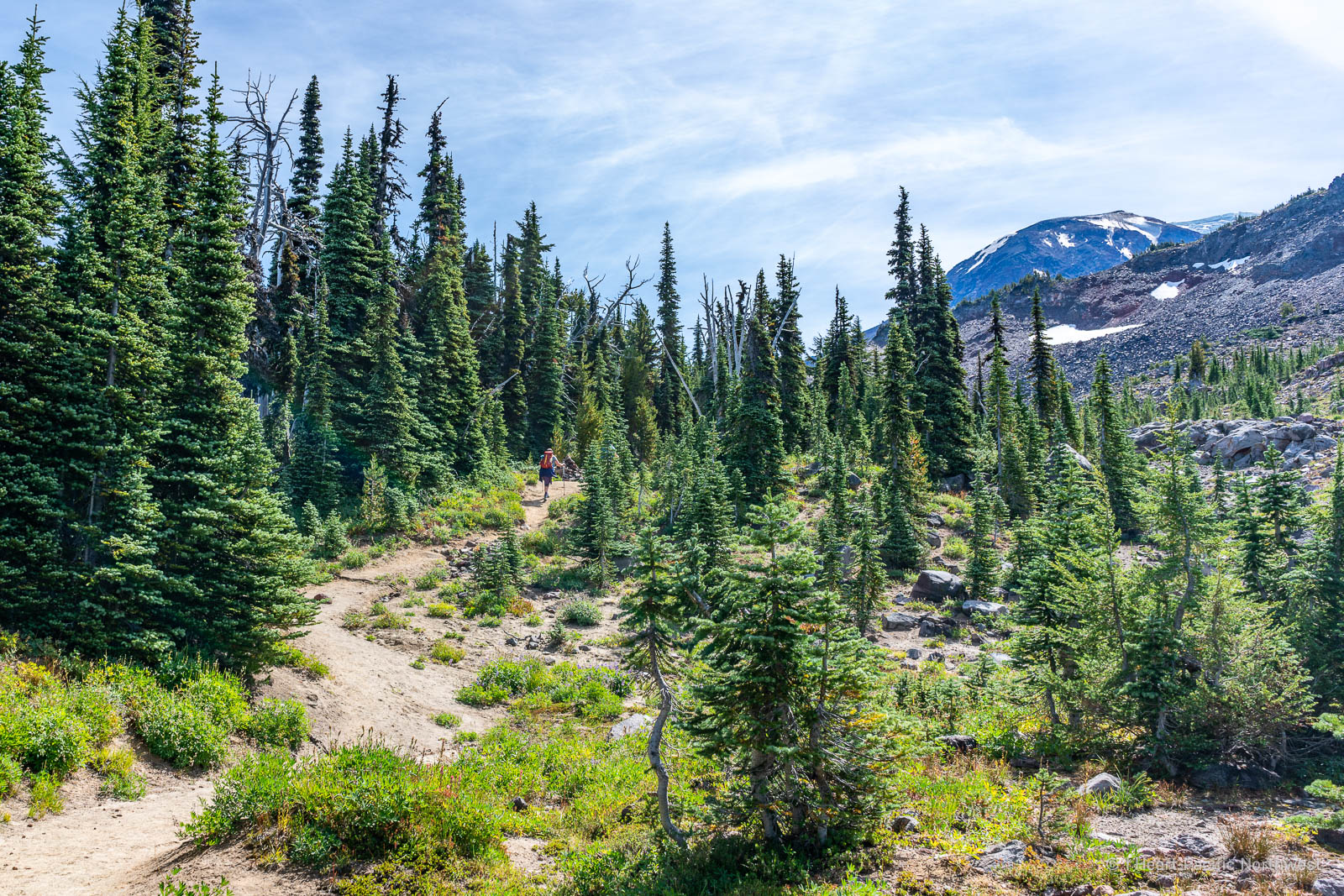 Mount Adams - Killen Creek backpacking trip