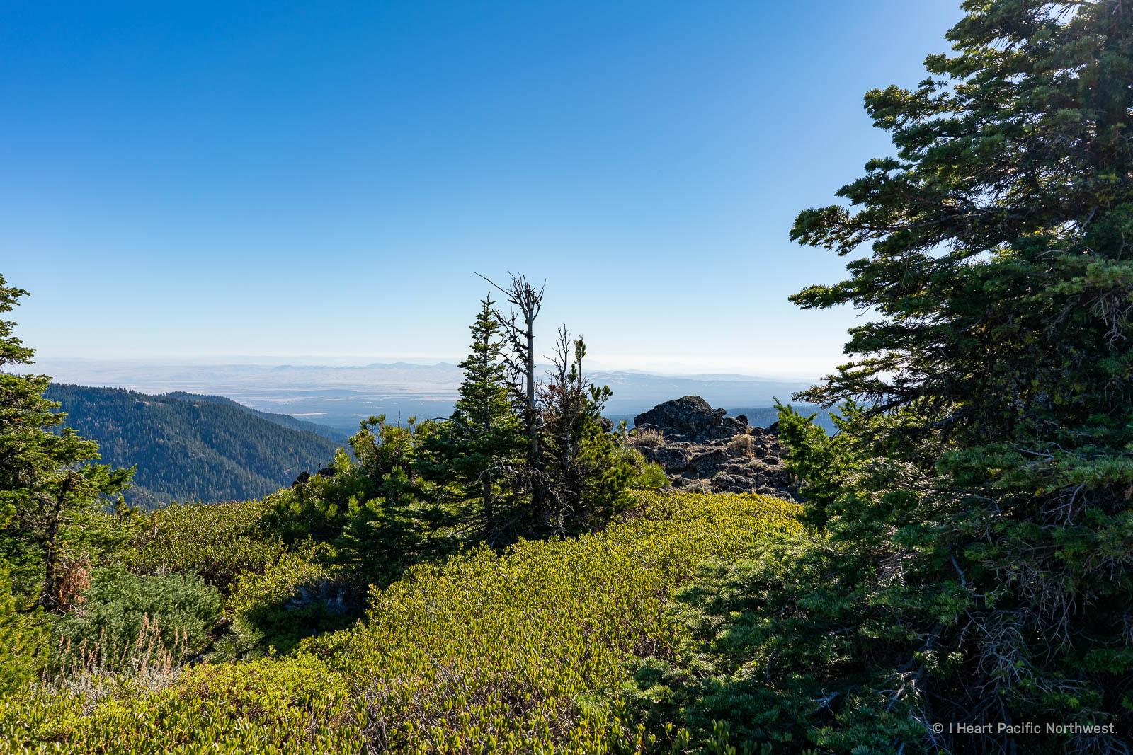 Lookout Mountain hike from Fret Creek trailhead