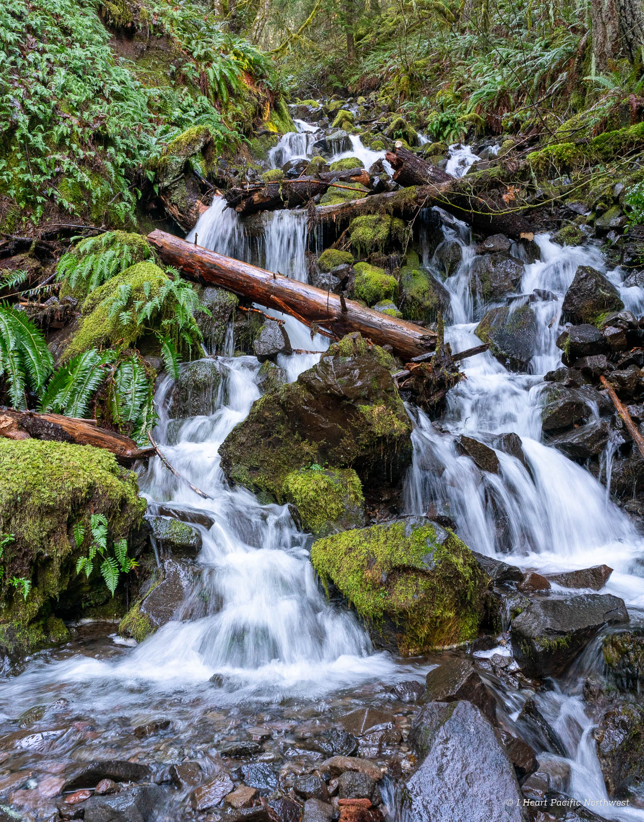 Salmon River Canyon hike