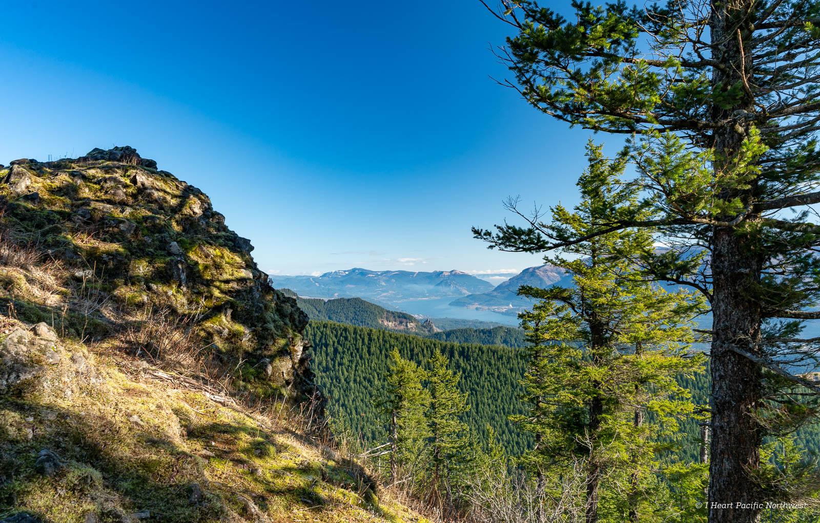 Columbia River Gorge - Hardy Ridge hike