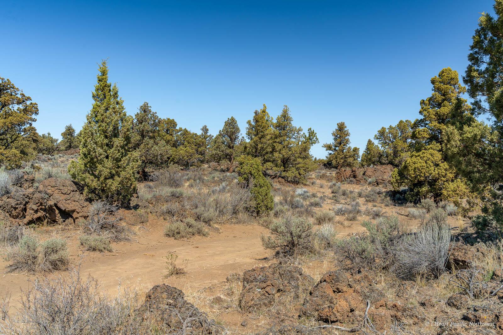 Oregon Badlands Wilderness