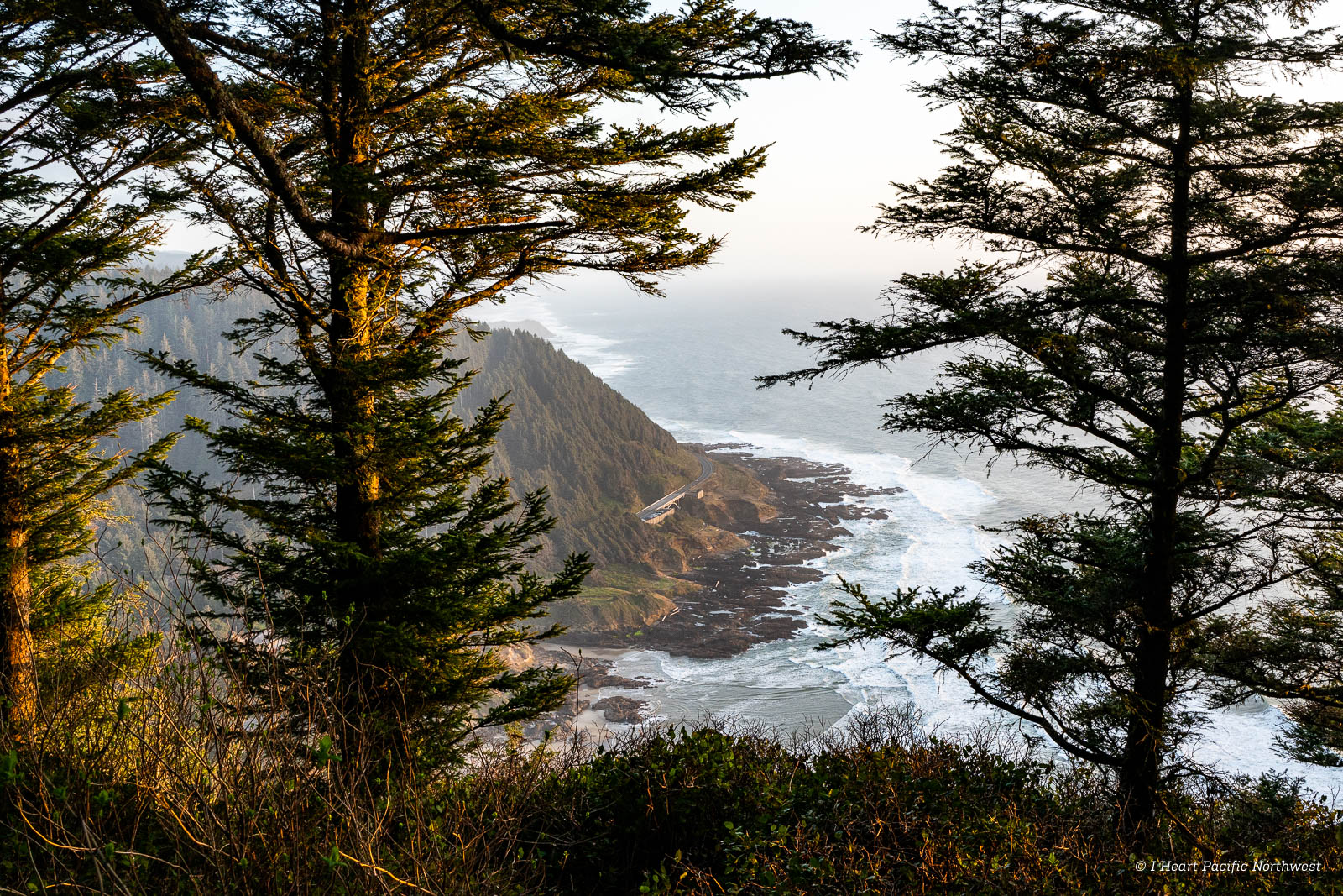 Oregon Coast: camping at Beachside & exploring Cape Perpetua