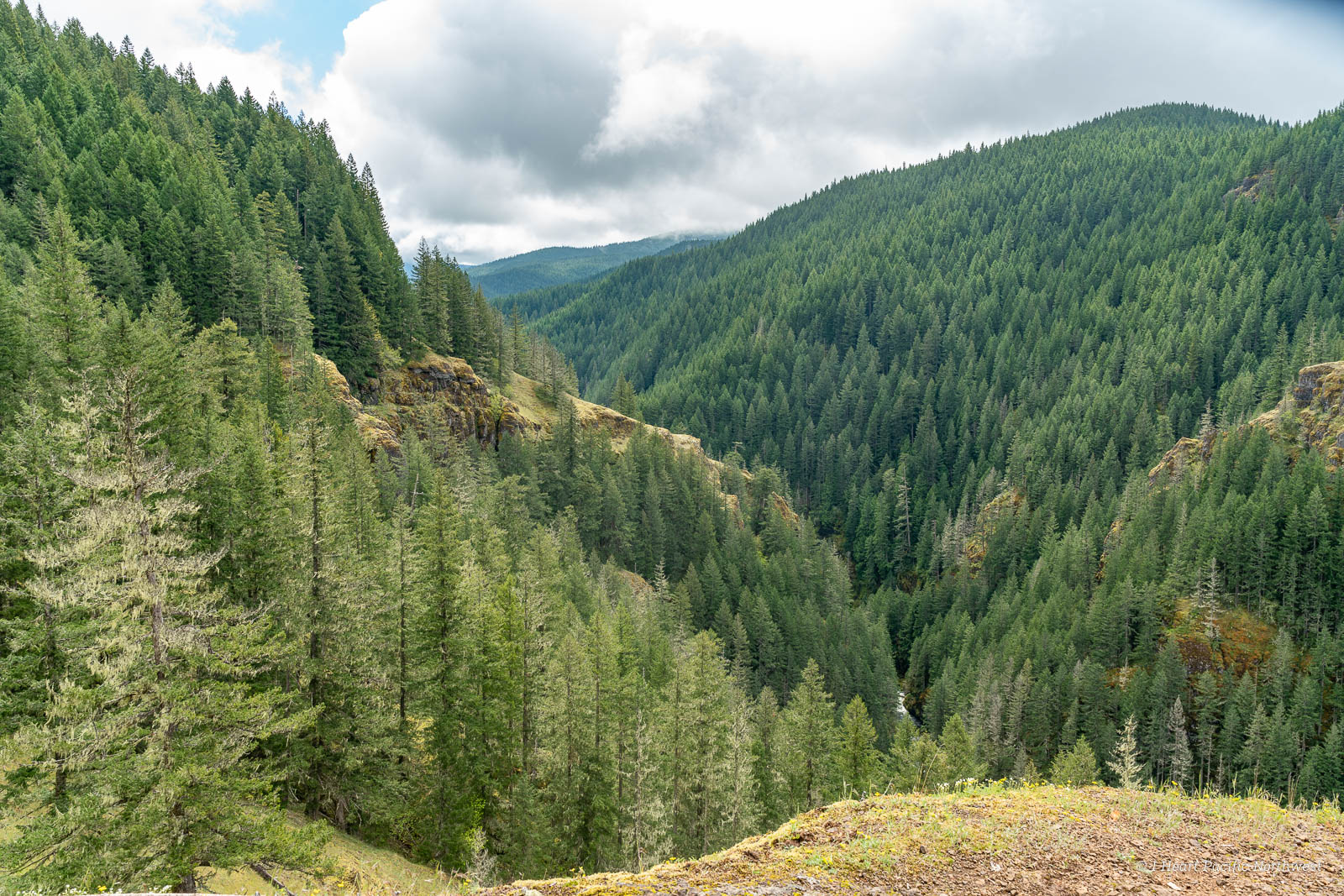 Salmon River Canyon - Goat Creek backpacking trip