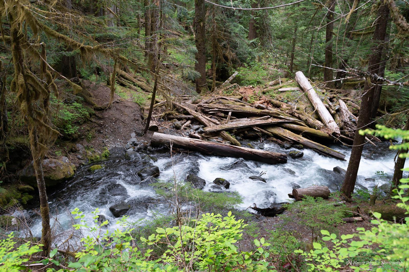 backpack - North Fork Skokomish Trail