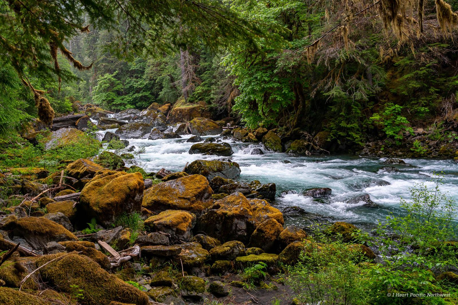 backpack - North Fork Skokomish River