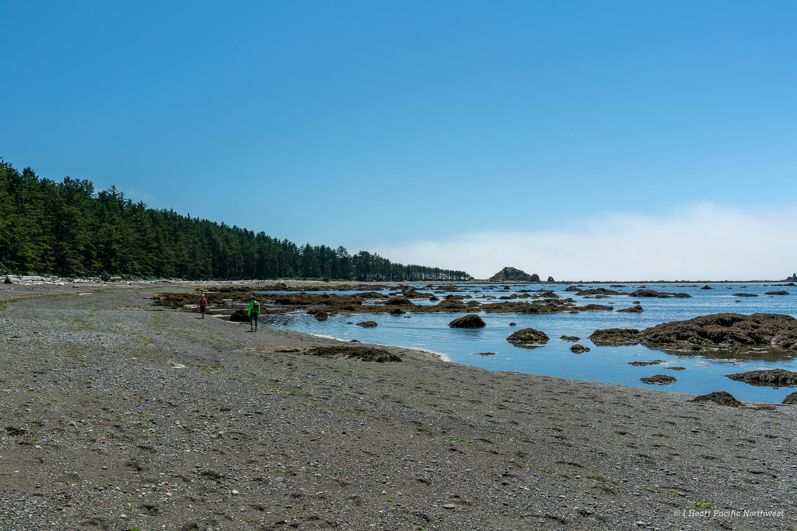 Ozette Triangle - South Sand Point backpacking trip